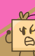 Popsicley Square's BFB 17 Icon
