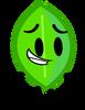 Leafy (Object Elimination)