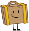 Newest Suitcase Pose