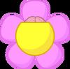 Flower openened brain No lid