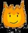Firey 24