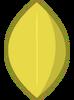 Lemon Leafy