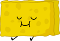 Spongy (Battle for BFDI)