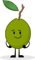 Guava-0