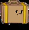 Suitcase Not Amused
