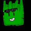 GrassyNEW