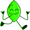 Leafy BFSU 2021