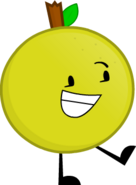 Grapefruit Rig