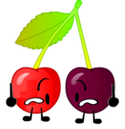BFSU Object Oppose Cherries