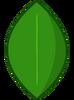 Watermelon Leafy