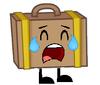 Suitcase crying