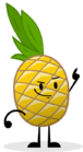 SL Pineapple Pose