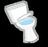 ToiletNewAsset