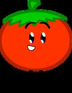 Tomato (ROTBFDIWP)