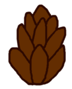 Assets-Pinecone
