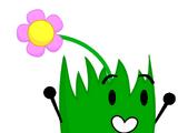 Flower Grassy