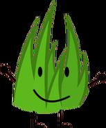Grassy 3