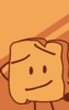 Woody's BFB 18 Icon