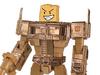 Woody Transformer