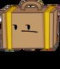 New Suitcase Pose