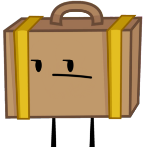 New Suitcase Pose.png