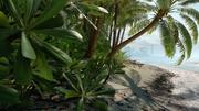 Scarif beach loading screen.png