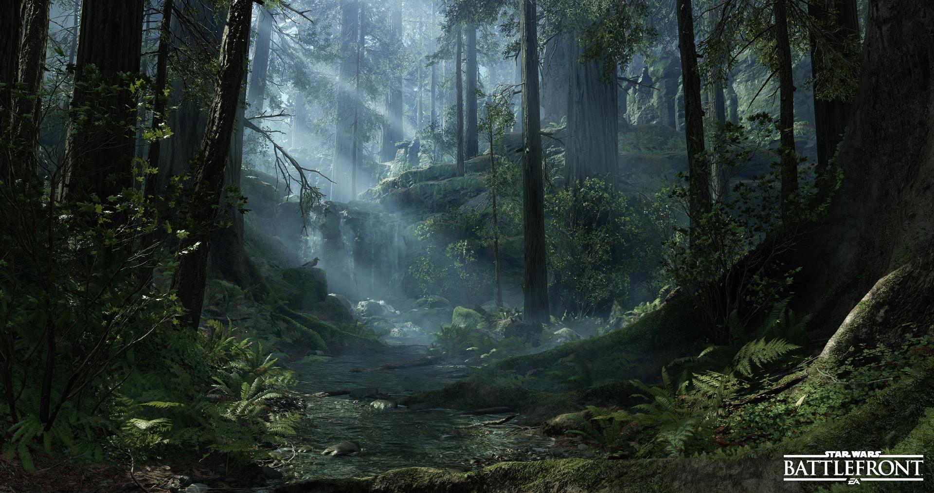 Endor: Swamp Crash Site