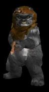 Ewok2