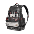 Icon Backpack Level 2 PGC 2019 Backpack skin.png