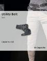 Utility Belt New.jpg