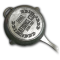 Weapon skin PUBG Nations Cup 2019 Pan.png