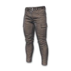 Icon equipment CombatPantsBrown.png