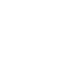 Emblem Lone Survivor.png