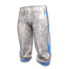 Icon equipment Legs XDD's Tracksuit Pants.png