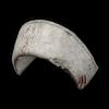 Icon equipment Head Bloody Nurse Cap.png