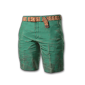 Icon equipment Pants Beach Shorts (Green).png