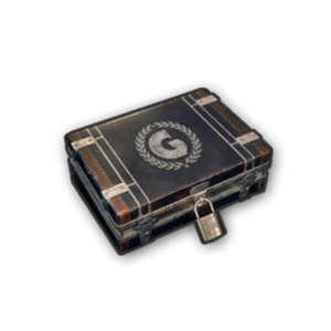Icon box GIC crateBox.png