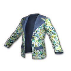 Icon equipment Jacket P 01.png