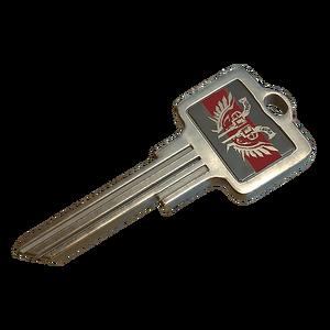 Icon Key WEAPON SKIN KEY.png