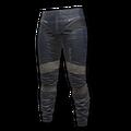Icon equipment Legs Erangel Biker Pants.png