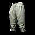 Icon equipment Pants Hwarang Pants.png