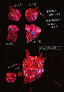 Witch Heart Concept ARt