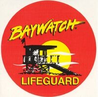 1-red-baywatch-shorts-and-1-yellow-baywatch-t-shirt-4720-p.jpg