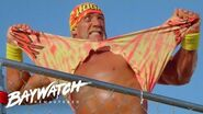 HULK HOGAN & MACHO MAN RANDY SAVAGE VS NATURE BOY Ric Flair & BIG VAN VADER Who Will Win? Baywatch
