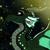 Iguane l'aile de Pluie