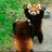 Cloiewspier18's avatar