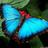 LyraSilver's avatar