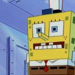 CHATBOBIACHATBOT's avatar