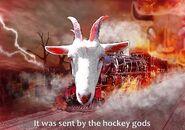 Goat train