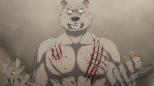 Cicatrices de Riz (Anime)